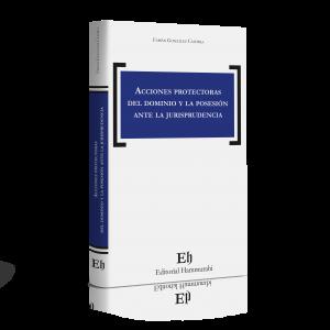 ACCIONES PROTECTORAS DEL DOMINIO Y LA POSESIÓN ANTE LA JURISPRUDENCIA (Próximamente)